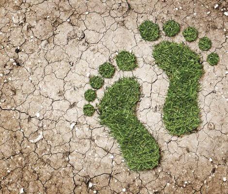 Klienci będą mogli śledzić wytwarzany przez siebie ślad węglowy