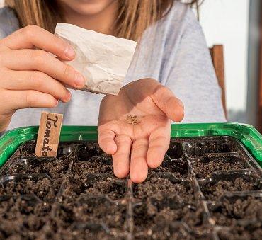 Jakie warzywa można uprawiać na balkonie i od czego zacząć – wiosenny poradnik