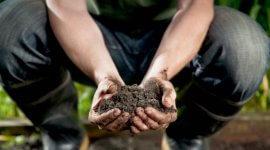 Gleby – dlaczego warto badać i jak oszczędzać na precyzyjnym nawożeniu?